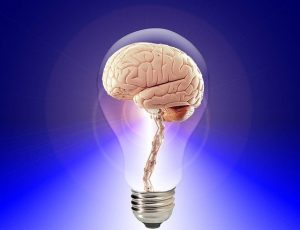 Supporting Brain Function